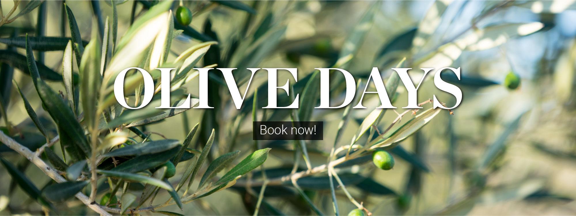 Web-slider-Olive-Days-2021-01-ENG